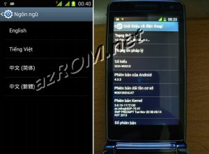 Rom Tiếng Việt Add Google Play Samsung SCH-W2013 Download